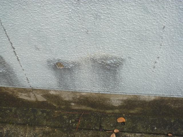外部の塀の塗装は要注意です!