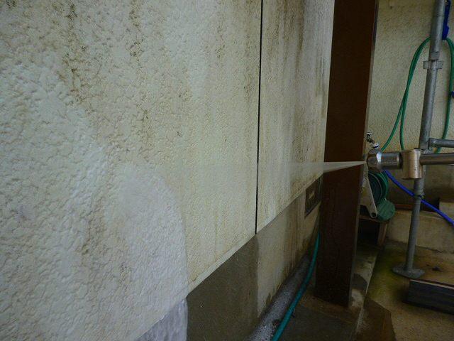 バイオ洗剤散布拡大