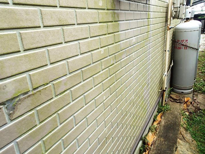 八街市八街ににて窯業サイディングの点検調査、藻が繫殖した外壁にはナノコンポジットWによる塗装工事をご提案